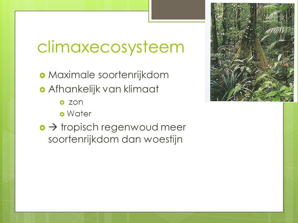 climaxecosysteem  Maximale soortenrijkdom  Afhankelijk van klimaat  zon  Water   tropisch regenwoud meer soortenrijkdom dan woestijn