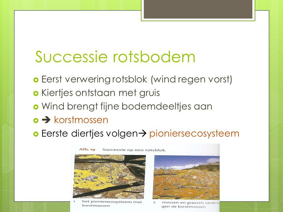Successie rotsbodem  Eerst verwering rotsblok (wind regen vorst)  Kiertjes ontstaan met gruis  Wind brengt fijne bodemdeeltjes aan   korstmossen