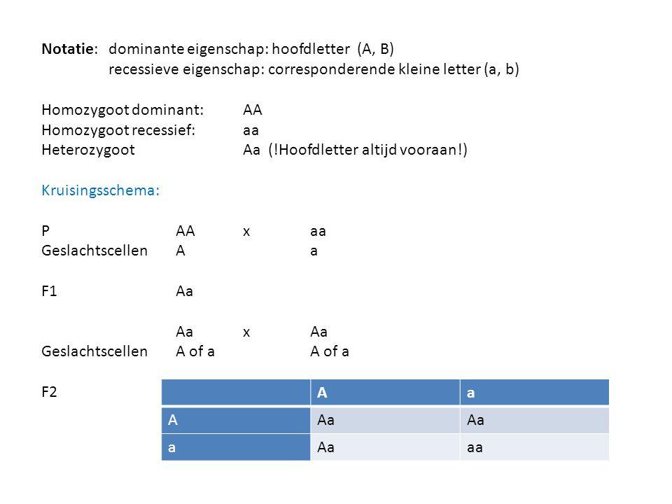 Notatie: dominante eigenschap: hoofdletter (A, B) recessieve eigenschap: corresponderende kleine letter (a, b) Homozygoot dominant: AA Homozygoot rece