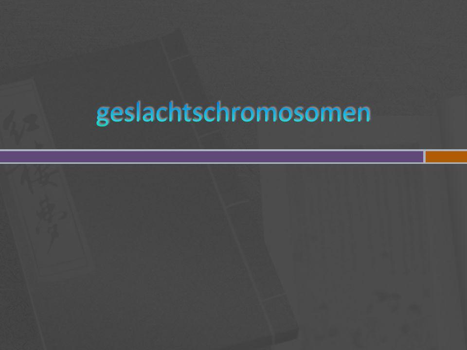  van de man  Van de vrouw 22 paar autosomen ( precies 2 aan 2 gelijk) 1 paar geslachtschromosomen