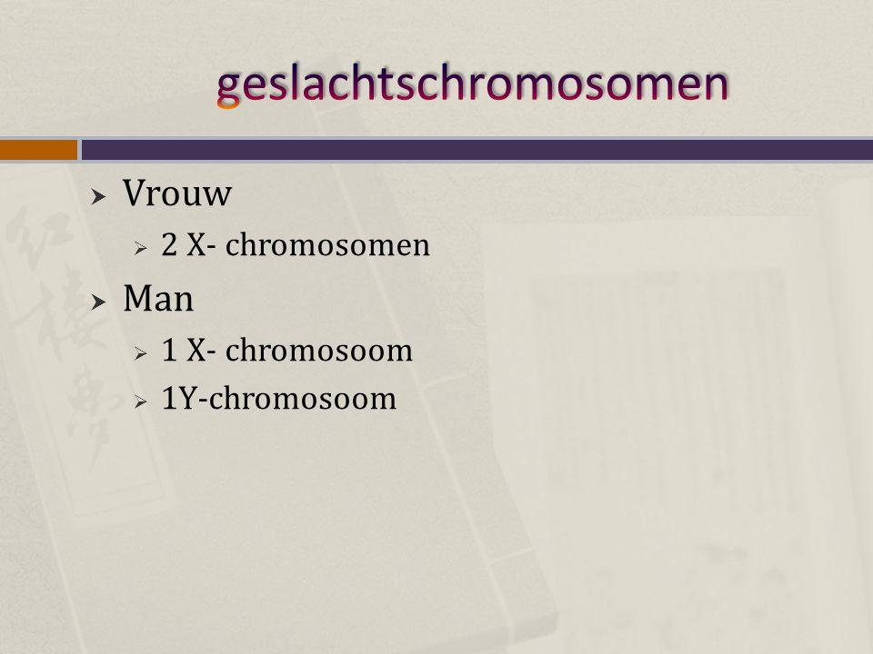  Vrouw  2 X- chromosomen  Man  1 X- chromosoom  1Y-chromosoom
