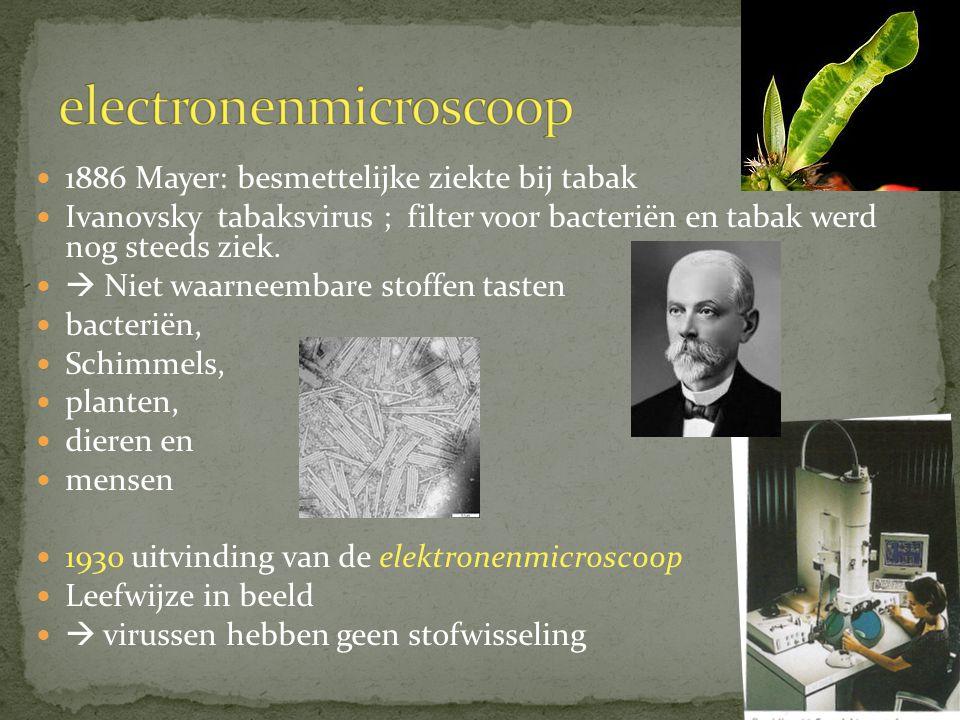 erwten-mozaïekvirus tabaksvirus bacteriofaag