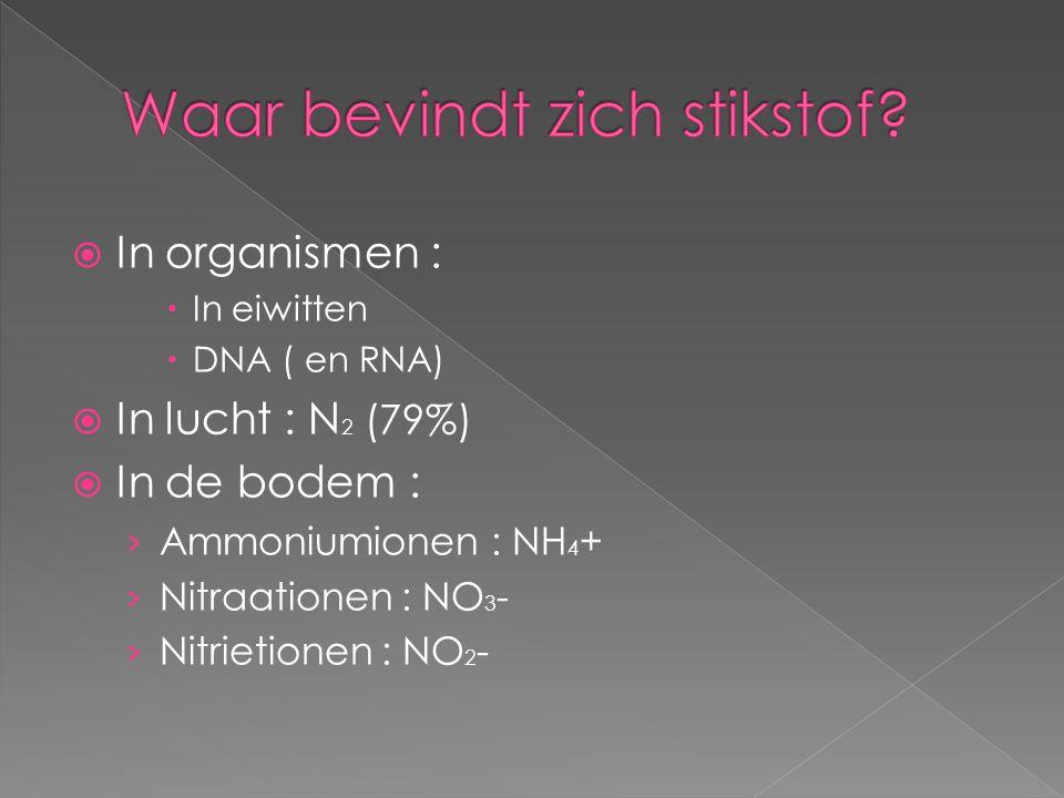  In organismen :  In eiwitten  DNA ( en RNA)  In lucht : N 2 (79%)  In de bodem : › Ammoniumionen : NH 4 + › Nitraationen : NO 3 - › Nitrietionen