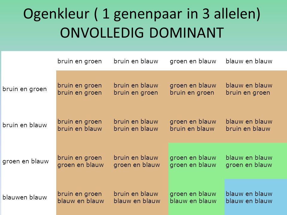 Ogenkleur ( 1 genenpaar in 3 allelen) ONVOLLEDIG DOMINANT bruin en groenbruin en blauwgroen en blauwblauw en blauw bruin en groenbruin en groen bruin