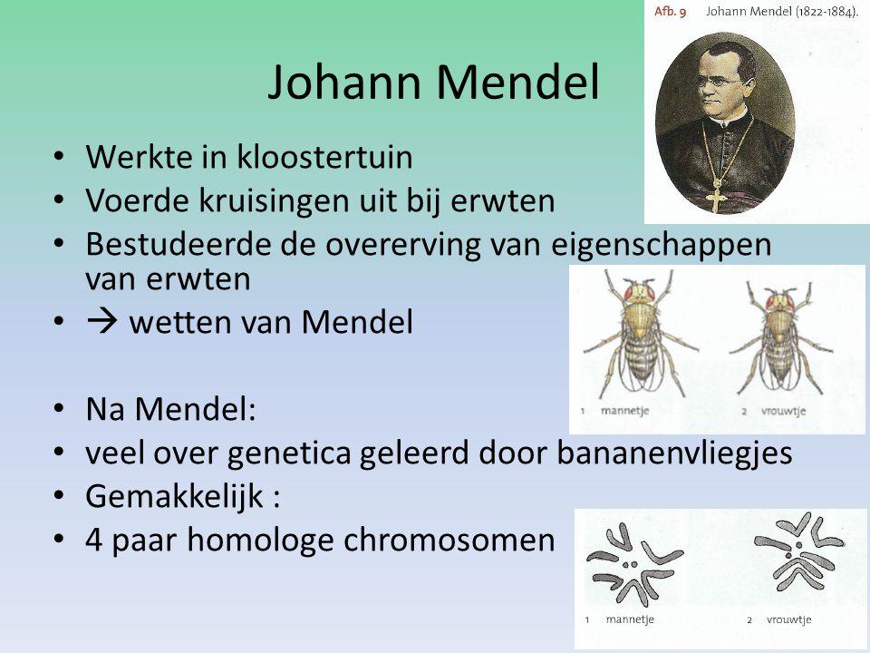 Johann Mendel Werkte in kloostertuin Voerde kruisingen uit bij erwten Bestudeerde de overerving van eigenschappen van erwten  wetten van Mendel Na Me