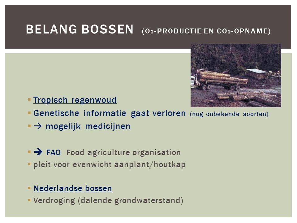  Tropisch regenwoud  Genetische informatie gaat verloren (nog onbekende soorten)  mogelijk medicijnen  FAO Food agriculture organisation  pleit voor evenwicht aanplant/houtkap  Nederlandse bossen  Verdroging (dalende grondwaterstand) BELANG BOSSEN (O 2 -PRODUCTIE EN CO 2 -OPNAME)
