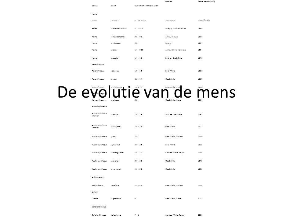 De evolutie van de mens GenusSoortOuderdom in miljoen jaren GebiedEerste beschrijving Homo sapiens0,15 - hedenWereldwijd1868 (fossiel) Homoneanderthal
