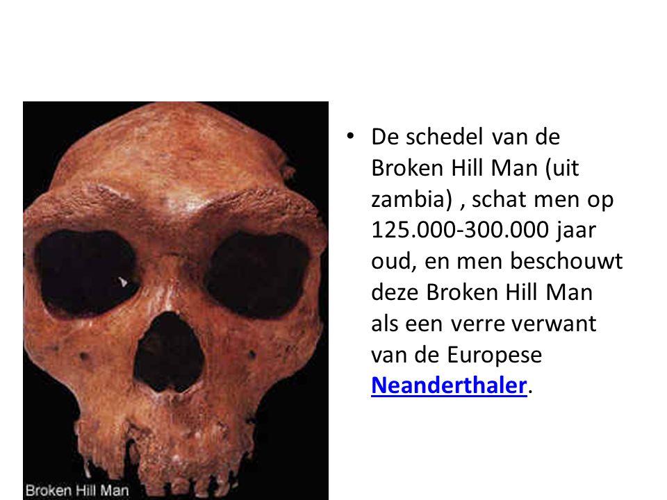 De schedel van de Broken Hill Man (uit zambia), schat men op 125.000-300.000 jaar oud, en men beschouwt deze Broken Hill Man als een verre verwant van