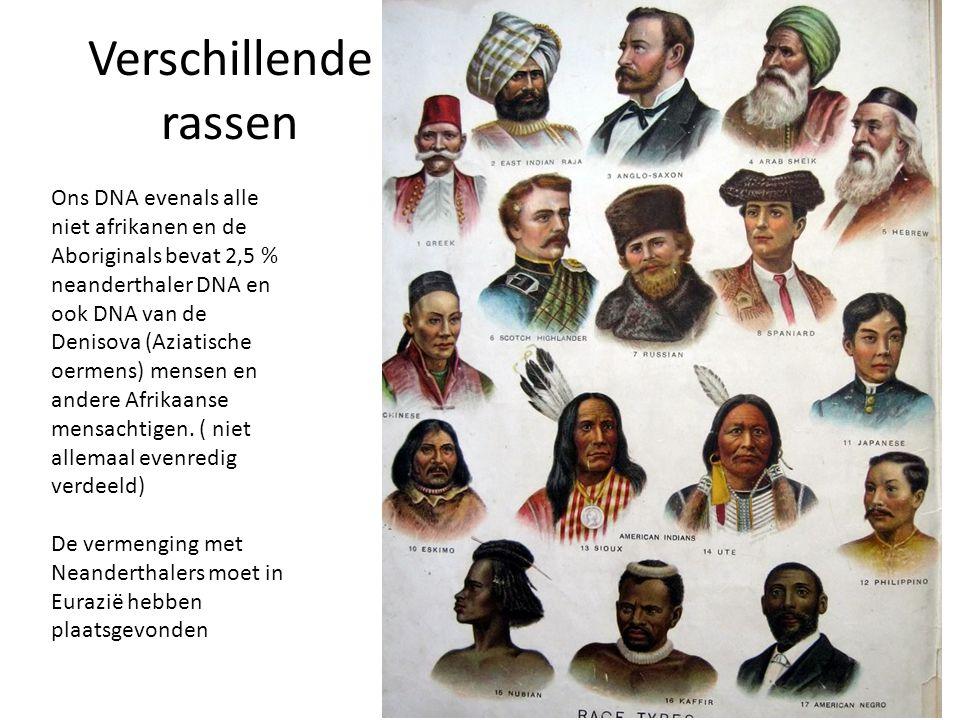Verschillende rassen Ons DNA evenals alle niet afrikanen en de Aboriginals bevat 2,5 % neanderthaler DNA en ook DNA van de Denisova (Aziatische oermen