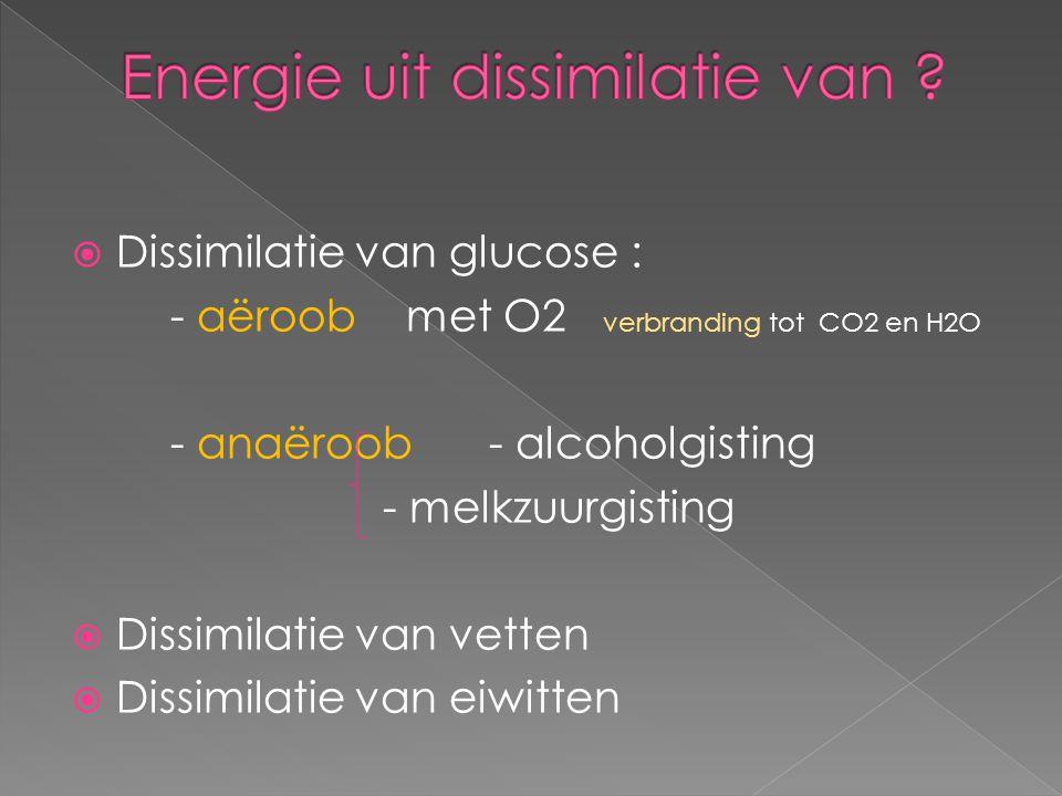  Dissimilatie van glucose : - aëroob met O2 verbranding tot CO2 en H2O - anaëroob - alcoholgisting - melkzuurgisting  Dissimilatie van vetten  Diss