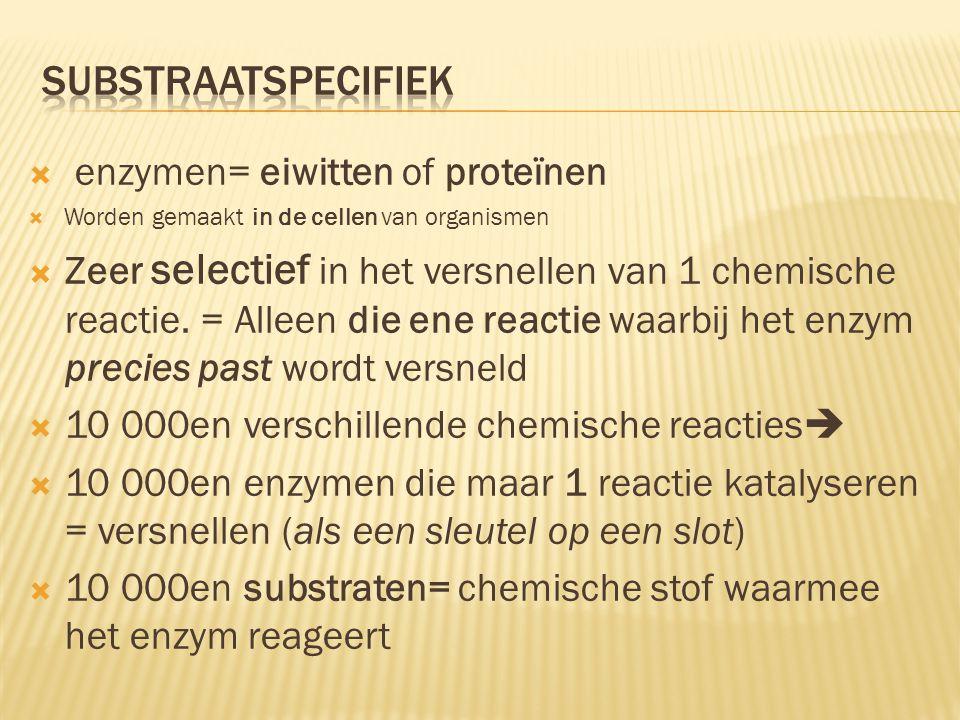  enzymen= eiwitten of proteïnen  Worden gemaakt in de cellen van organismen  Zeer selectief in het versnellen van 1 chemische reactie. = Alleen die