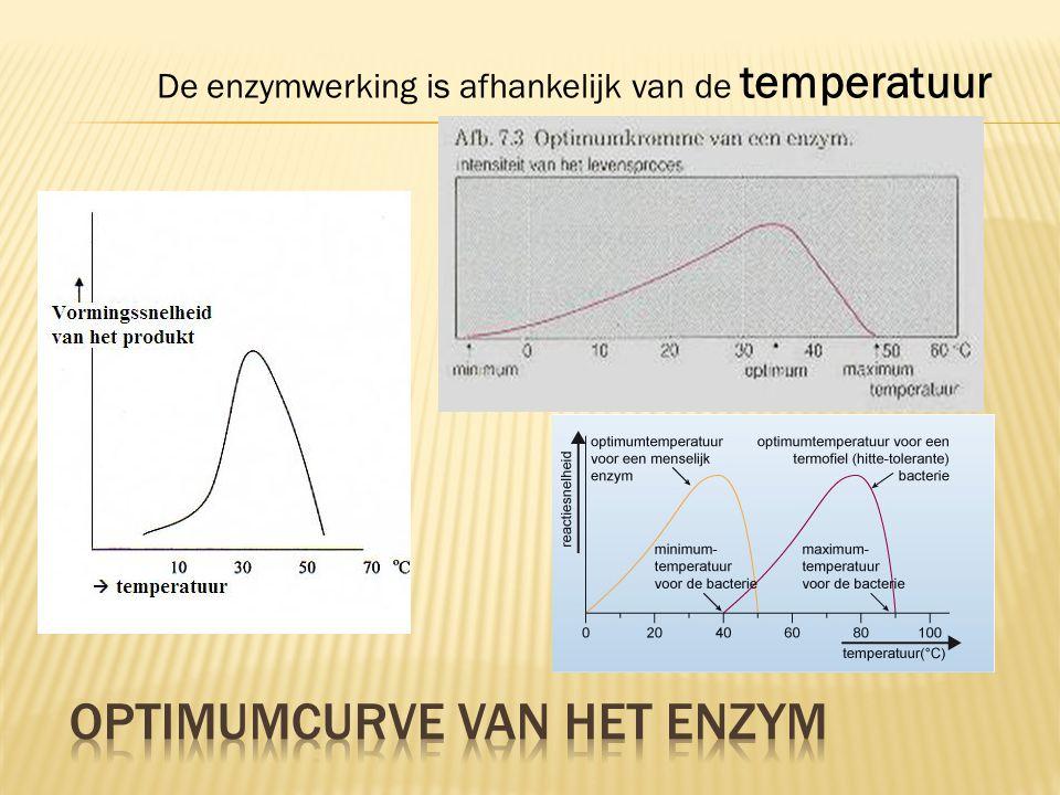 De enzymwerking is afhankelijk van de temperatuur