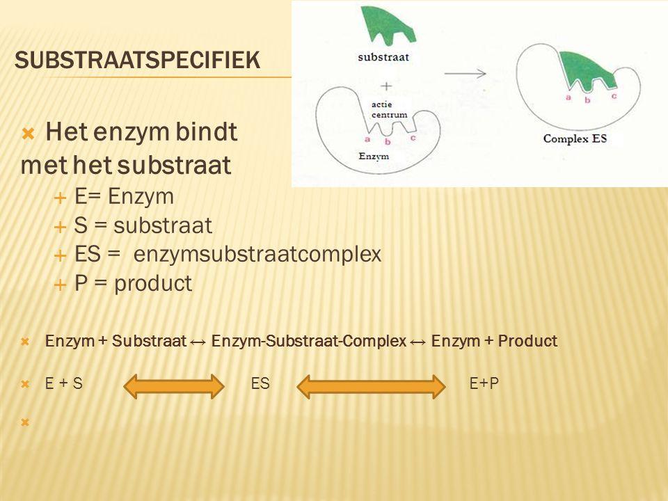 SUBSTRAATSPECIFIEK  Het enzym bindt met het substraat  E= Enzym  S = substraat  ES = enzymsubstraatcomplex  P = product  Enzym + Substraat ↔ Enz