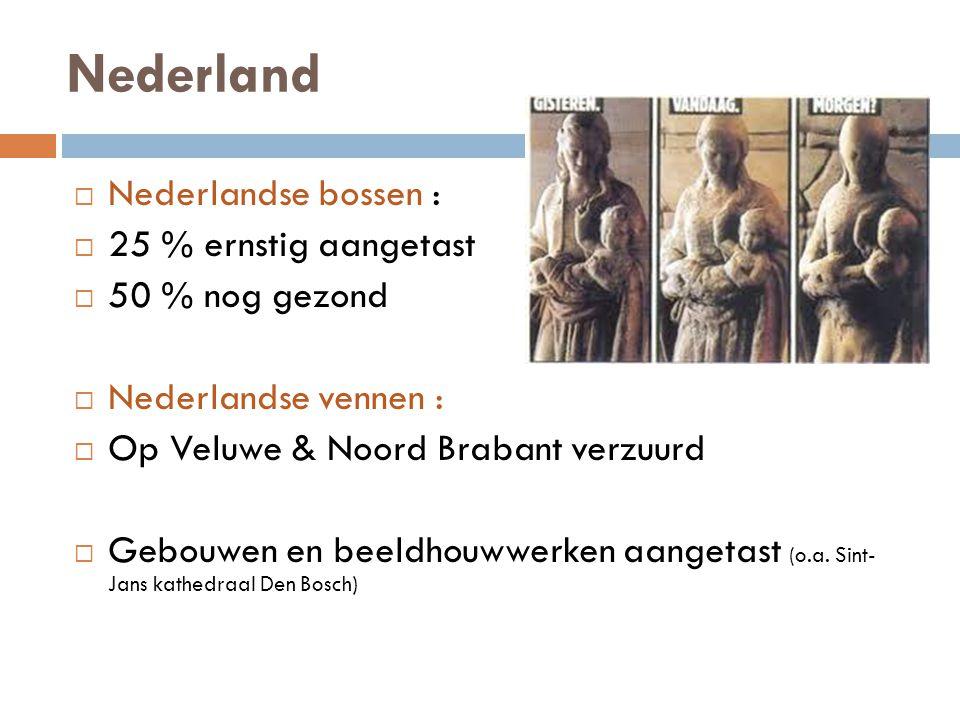 Nederland  Nederlandse bossen :  25 % ernstig aangetast  50 % nog gezond  Nederlandse vennen :  Op Veluwe & Noord Brabant verzuurd  Gebouwen en beeldhouwwerken aangetast (o.a.