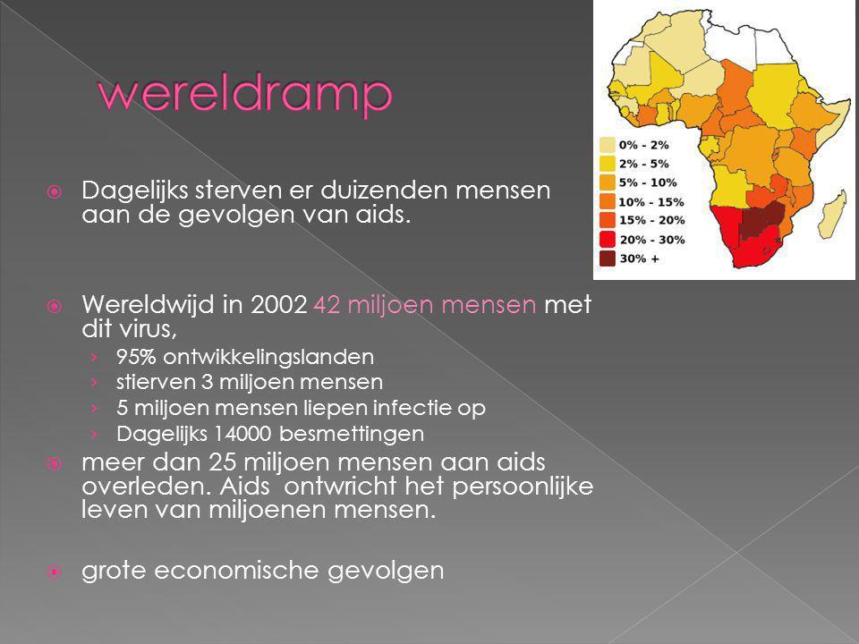  Dagelijks sterven er duizenden mensen aan de gevolgen van aids.  Wereldwijd in 2002 42 miljoen mensen met dit virus, › 95% ontwikkelingslanden › st