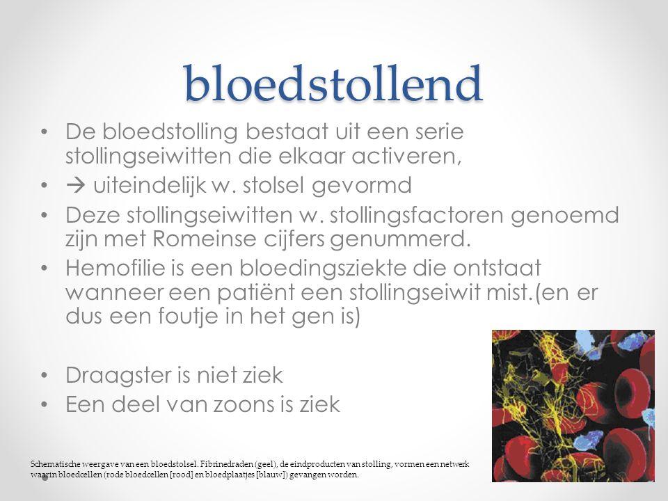 bloedstollend De bloedstolling bestaat uit een serie stollingseiwitten die elkaar activeren,  uiteindelijk w. stolsel gevormd Deze stollingseiwitten