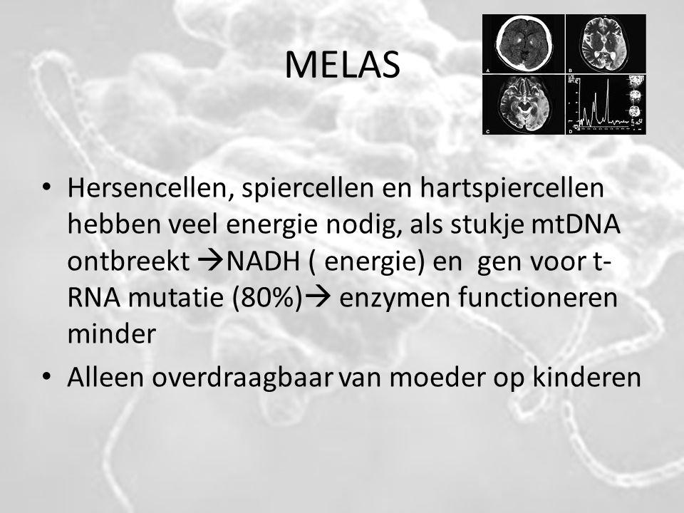 MELAS Hersencellen, spiercellen en hartspiercellen hebben veel energie nodig, als stukje mtDNA ontbreekt  NADH ( energie) en gen voor t- RNA mutatie