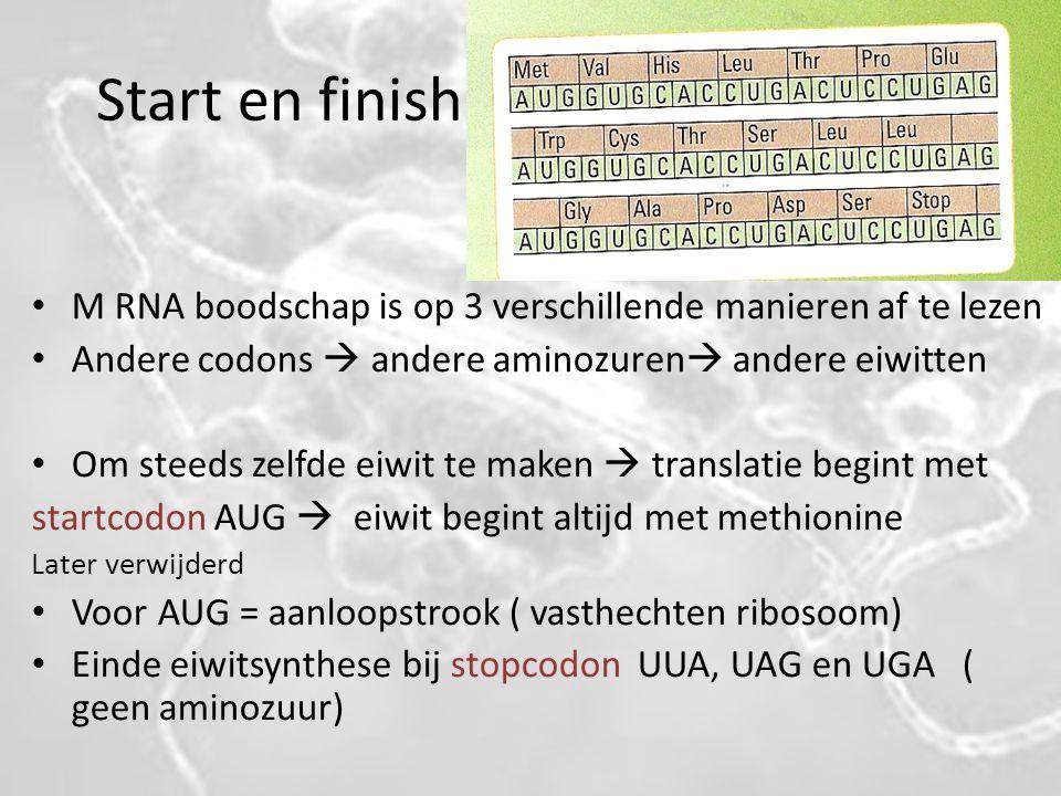 Start en finish M RNA boodschap is op 3 verschillende manieren af te lezen Andere codons  andere aminozuren  andere eiwitten Om steeds zelfde eiwit