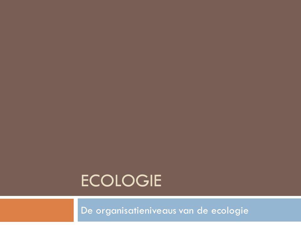 ECOLOGIE De organisatieniveaus van de ecologie