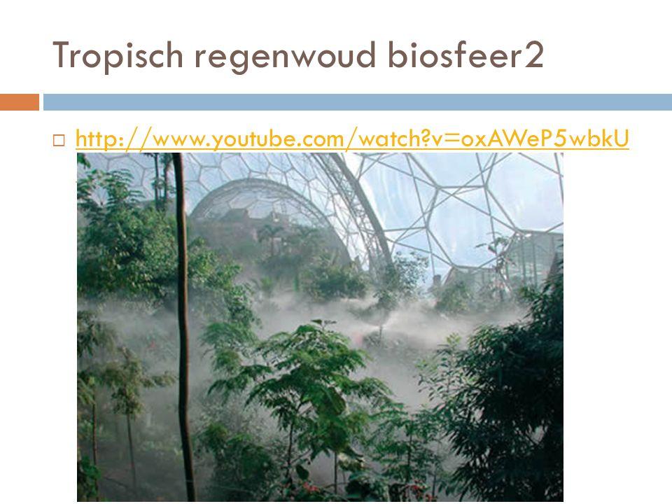 Tropisch regenwoud biosfeer2  http://www.youtube.com/watch?v=oxAWeP5wbkU &feature=related http://www.youtube.com/watch?v=oxAWeP5wbkU &feature=related