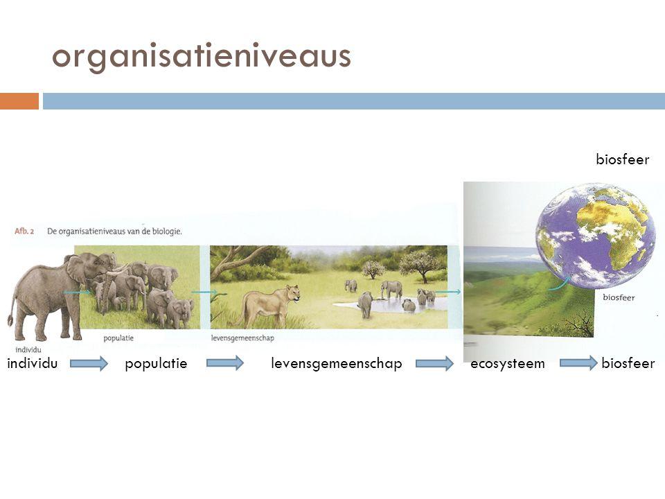 organisatieniveaus ecosysteemindividupopulatielevensgemeenschap biosfeer