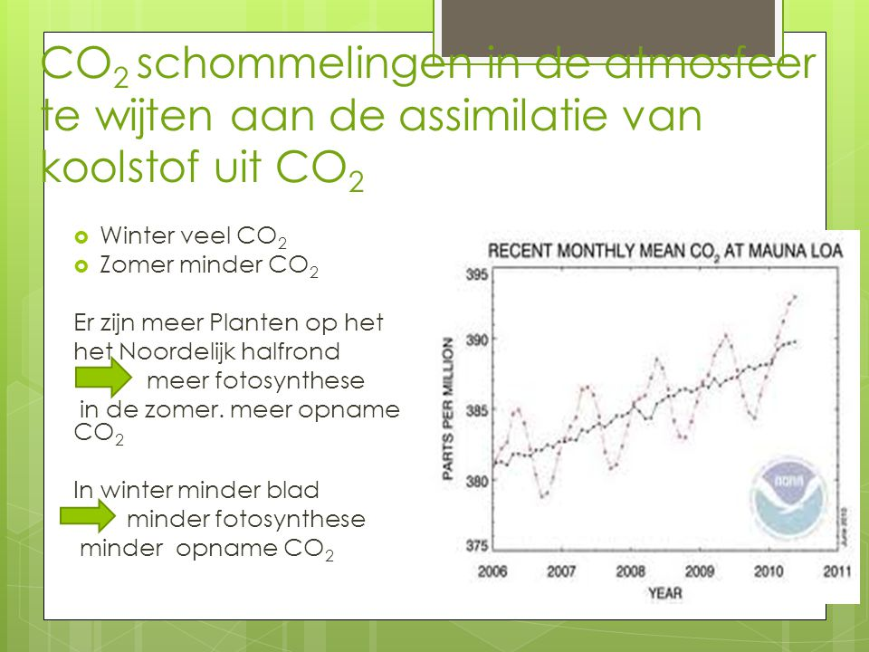 CO 2 schommelingen in de atmosfeer te wijten aan de assimilatie van koolstof uit CO 2  Winter veel CO 2  Zomer minder CO 2 Er zijn meer Planten op het het Noordelijk halfrond meer fotosynthese in de zomer.