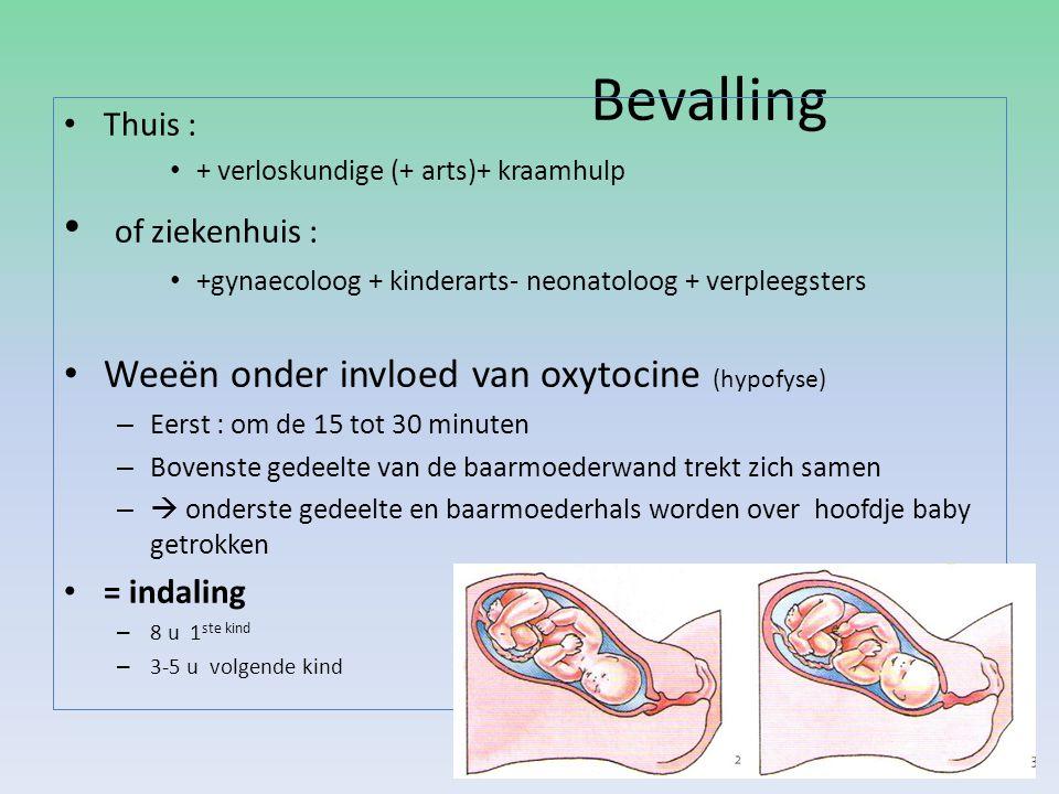 Bevalling Thuis : + verloskundige (+ arts)+ kraamhulp of ziekenhuis : +gynaecoloog + kinderarts- neonatoloog + verpleegsters Weeën onder invloed van o