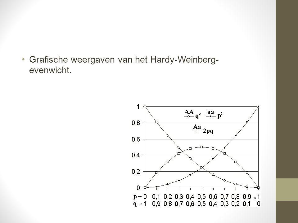 Grafische weergaven van het Hardy-Weinberg- evenwicht.