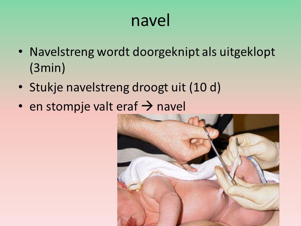 Couveuse Te vroeg geboren of zieke baby s Laag geboortegewicht erg weinig eigen lichaamsvet  niet in staat zijn eigen temperatuur te regelen.