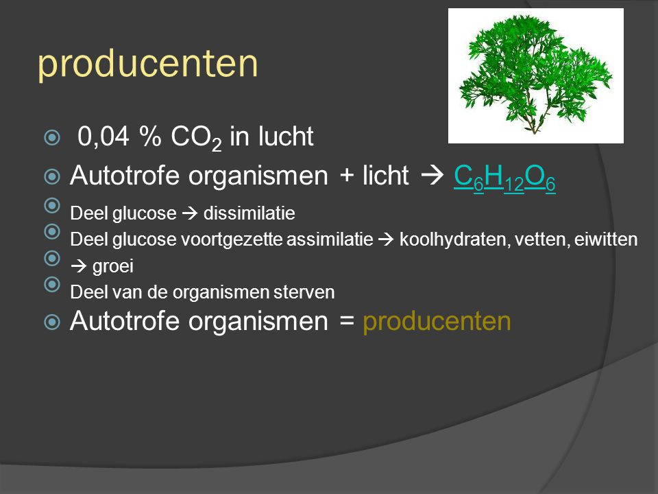 consumenten  Heterotrofe organismen eten de autotrofe organismen op  koolstof(verbindingen) komt nu in de heterotrofe organismen terecht  Heterotrofe organismen leven van de organische stoffen van andere organismen = consumenten