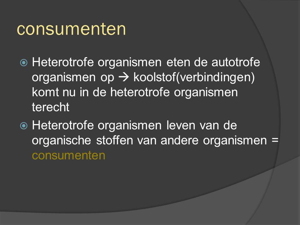 in de consumenten  Organische koolstofverbindingen: Deel organische stoffen  dissimilatie (verbranding)  CO 2 komt vrij.