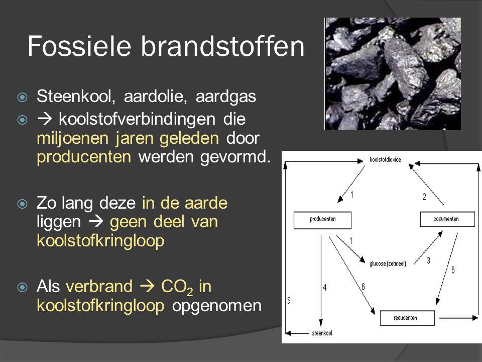 Fossiele brandstoffen  Steenkool, aardolie, aardgas   koolstofverbindingen die miljoenen jaren geleden door producenten werden gevormd.  Zo lang d