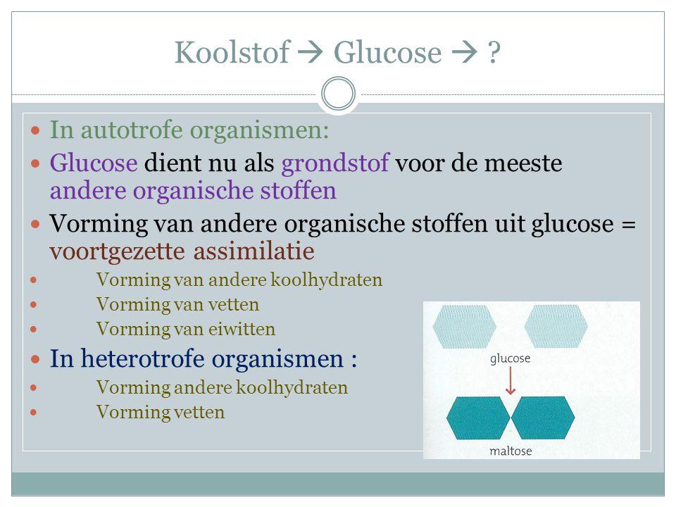 Koolstof  Glucose  ? In autotrofe organismen: Glucose dient nu als grondstof voor de meeste andere organische stoffen Vorming van andere organische