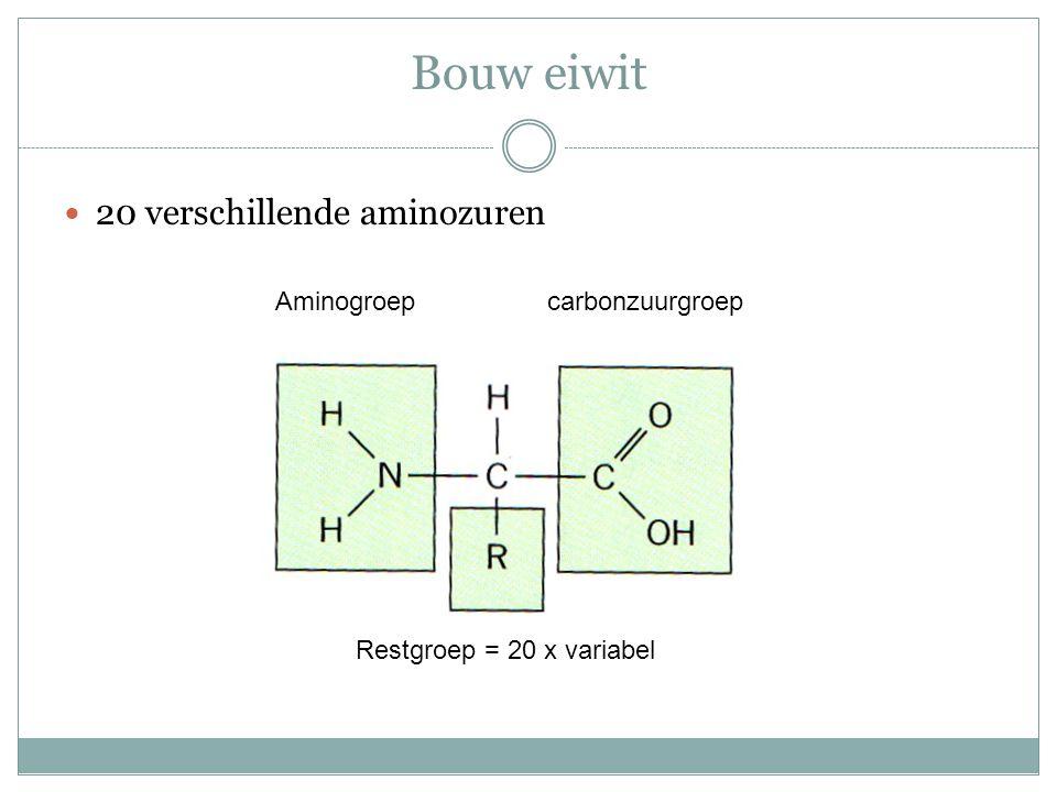aminozuren Cysteine Bevat S of zwavel