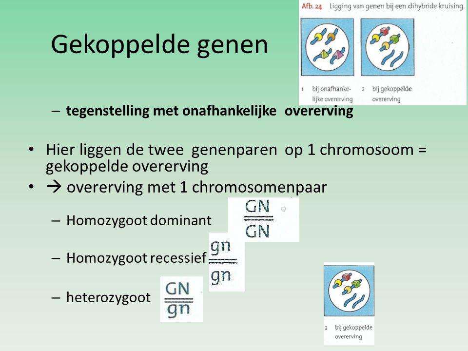 Gekoppelde genen – tegenstelling met onafhankelijke overerving Hier liggen de twee genenparen op 1 chromosoom = gekoppelde overerving  overerving met 1 chromosomenpaar – Homozygoot dominant – Homozygoot recessief – heterozygoot