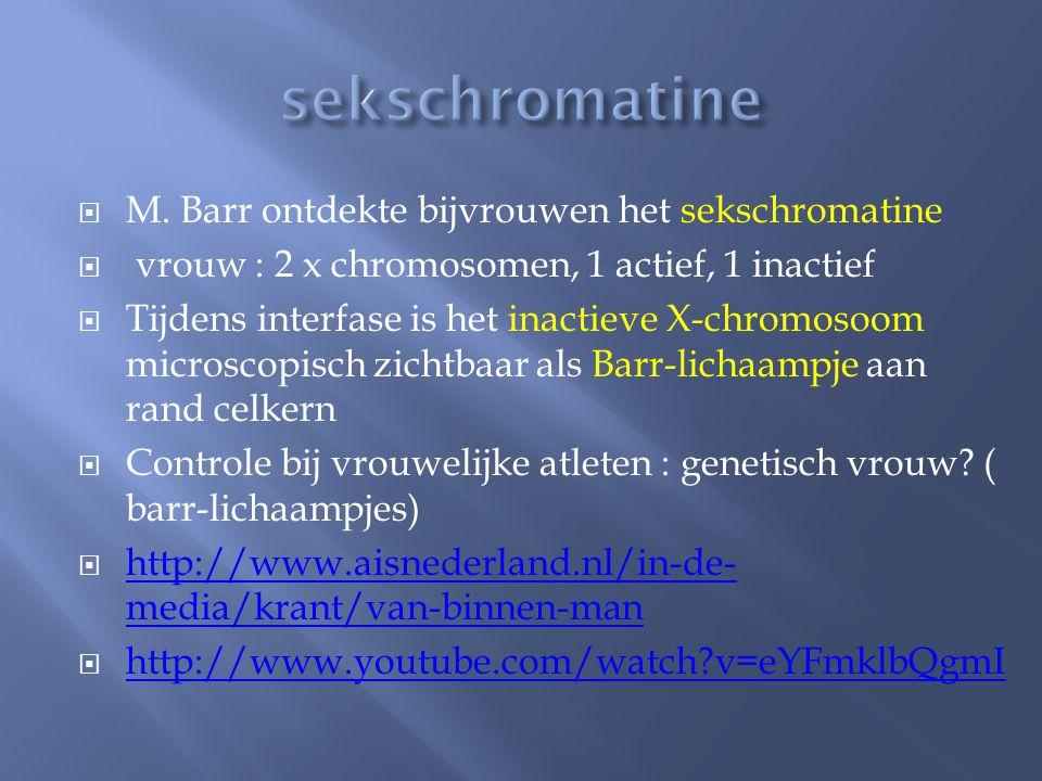  M. Barr ontdekte bijvrouwen het sekschromatine  vrouw : 2 x chromosomen, 1 actief, 1 inactief  Tijdens interfase is het inactieve X-chromosoom mic