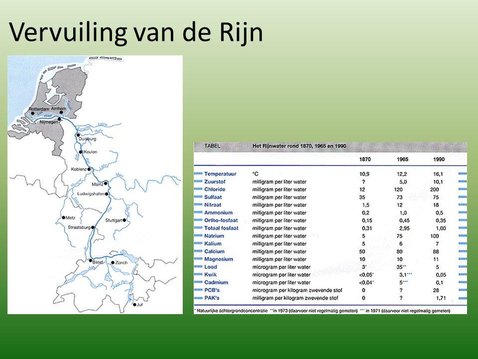 Vervuiling van de Rijn
