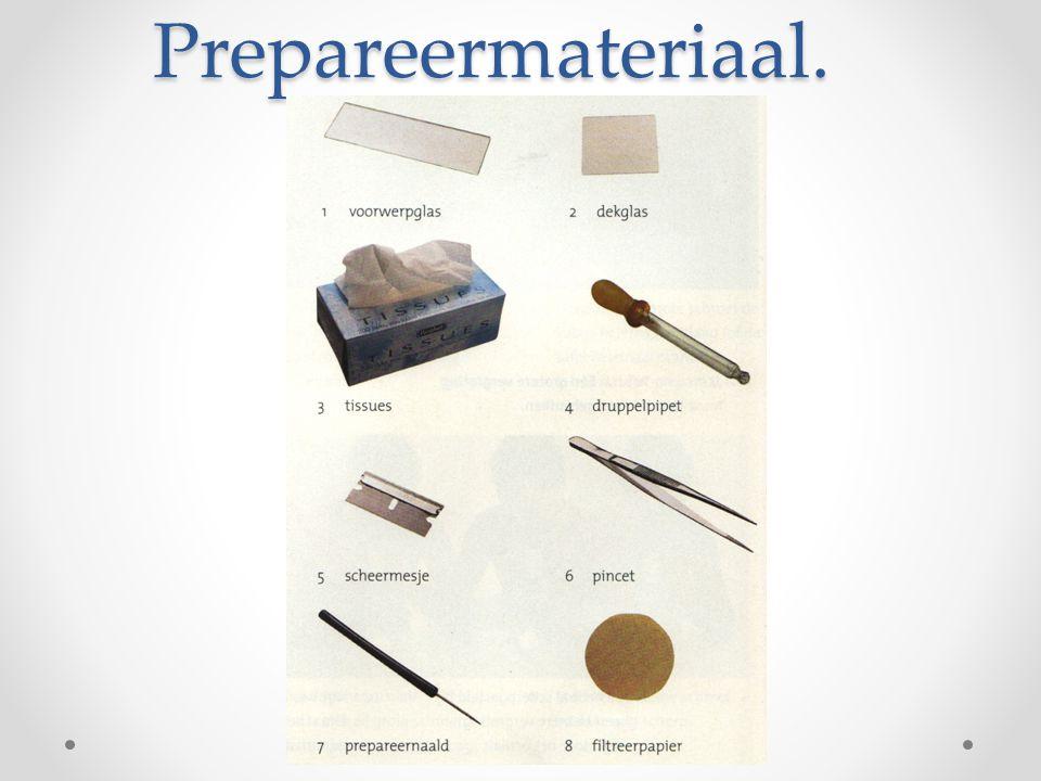 Vooraf Instellen op kleinste vergroting Preparaat onder klemmen ( midden van opening tafel) Opzij kijken.