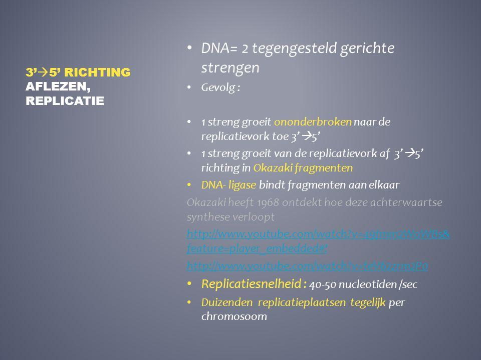 DNA= 2 tegengesteld gerichte strengen Gevolg : 1 streng groeit ononderbroken naar de replicatievork toe 3'  5' 1 streng groeit van de replicatievork