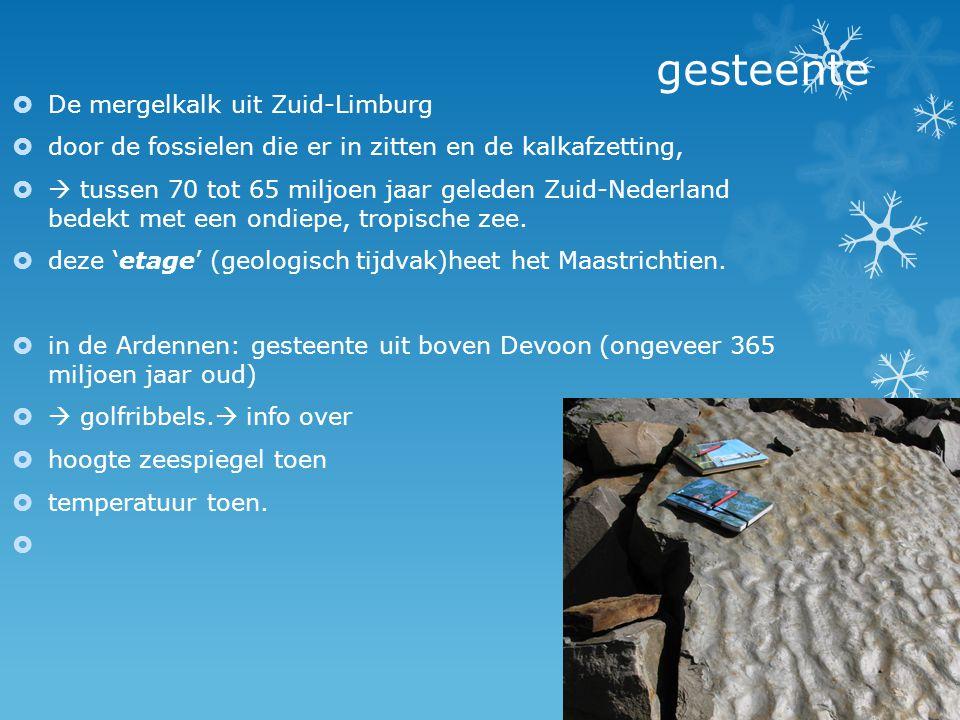 gesteente  De mergelkalk uit Zuid-Limburg  door de fossielen die er in zitten en de kalkafzetting,   tussen 70 tot 65 miljoen jaar geleden Zuid-Ne