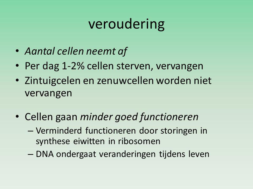 veroudering Aantal cellen neemt af Per dag 1-2% cellen sterven, vervangen Zintuigcelen en zenuwcellen worden niet vervangen Cellen gaan minder goed fu