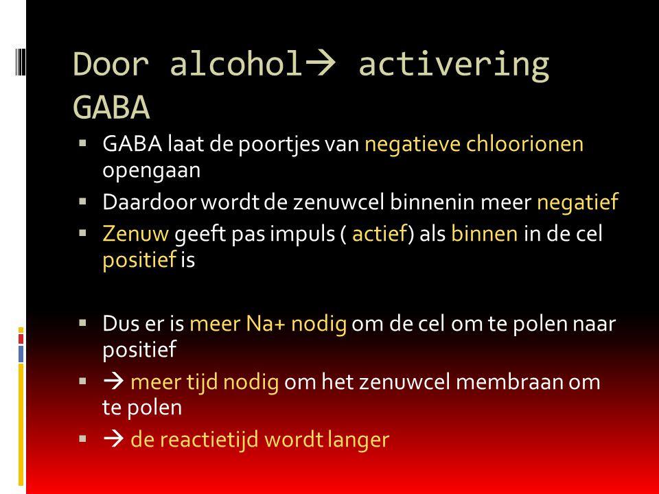Door alcohol  activering GABA  GABA laat de poortjes van negatieve chloorionen opengaan  Daardoor wordt de zenuwcel binnenin meer negatief  Zenuw