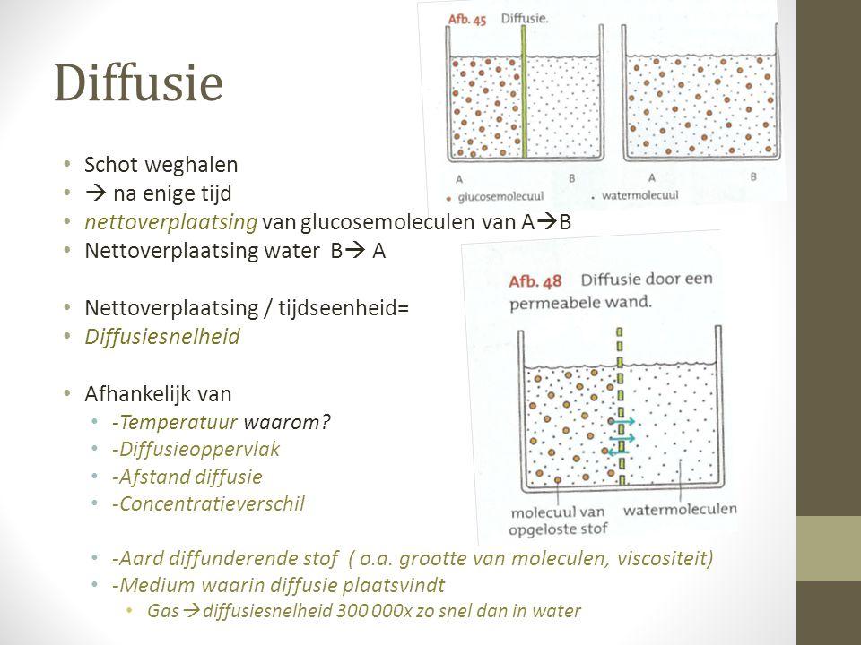 Diffusie Schot weghalen  na enige tijd nettoverplaatsing van glucosemoleculen van A  B Nettoverplaatsing water B  A Nettoverplaatsing / tijdseenhei