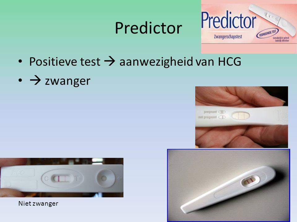 Predictor Positieve test  aanwezigheid van HCG  zwanger Niet zwanger