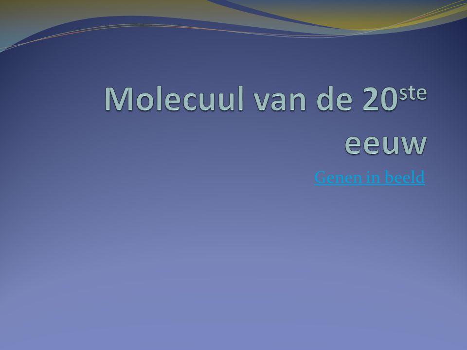 Meest voorkomende erfelijke aandoening met beperkte levensverwachting : cystic fibrosis.( 1300 in NL, 1/500 =drager) Kliercellen : dik slijm  problemen Luchtwegen trilhaarcellen voeren slijm niet af  ontstekingen  longblaasjes verstopt Spijsvertering  verteringsappen viskeus  diabetes  vetvertering slecht  ontlasting vet http://www.youtube.com/watch?v=5n29ZCvtCI8&feature= related http://www.youtube.com/watch?v=5n29ZCvtCI8&feature= related http://www.youtube.com/watch?v=ZteaL4xIYZE&feature= related http://www.youtube.com/watch?v=ZteaL4xIYZE&feature= related