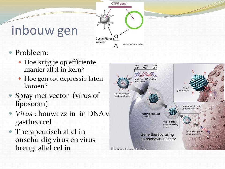 inbouw gen Probleem: Hoe krijg je op efficiënte manier allel in kern? Hoe gen tot expressie laten komen? Spray met vector (virus of liposoom) Virus :