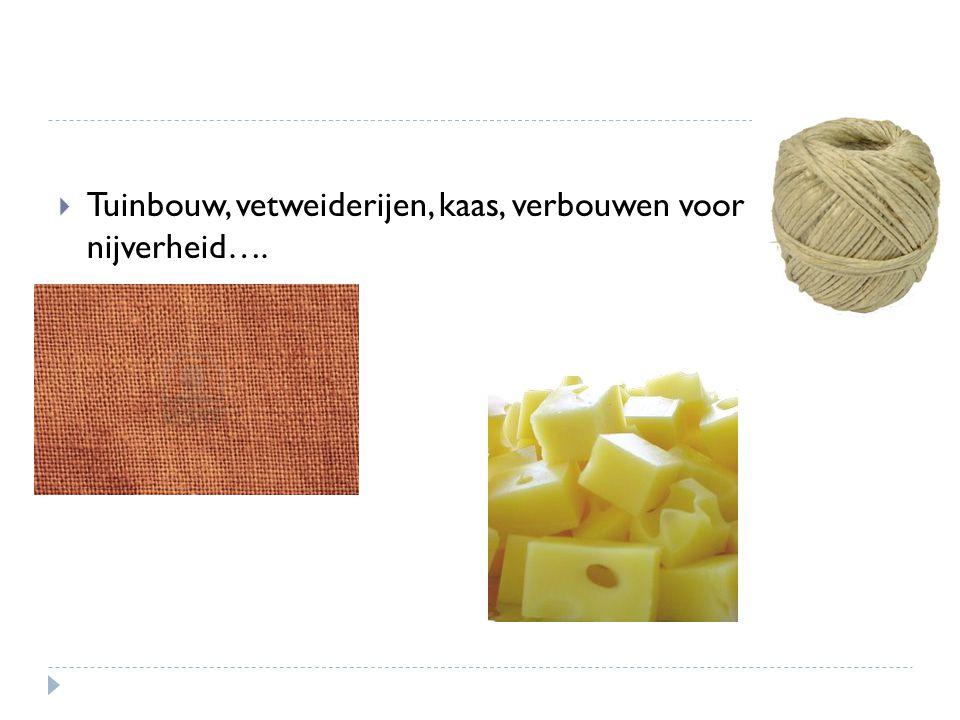  Tuinbouw, vetweiderijen, kaas, verbouwen voor nijverheid….