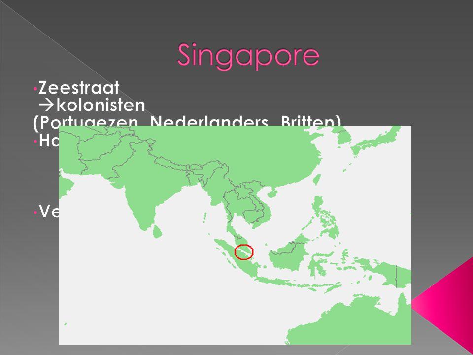  Singapore = leeuwenstad  Na WO2 : zelfstandige ministaat  1 politieke partij Alles en iedereen inzetten om geld te verdienen Gebieden werden aangewezen als export processing zones  distributiecentra  gigantische haventerreinen