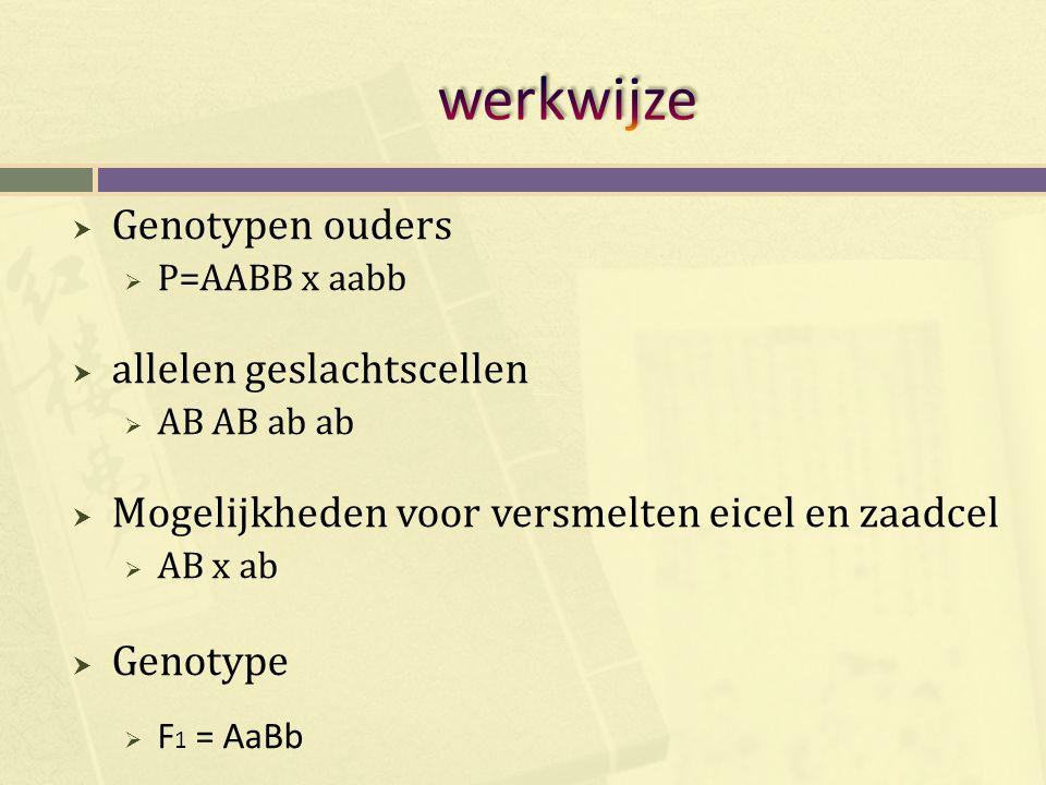  Genotypen ouders  P=AABB x aabb  allelen geslachtscellen  AB AB ab ab  Mogelijkheden voor versmelten eicel en zaadcel  AB x ab  Genotype  F 1