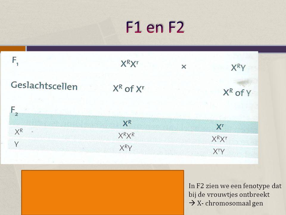 In F2 zien we een fenotype dat bij de vrouwtjes ontbreekt  X- chromosomaal gen